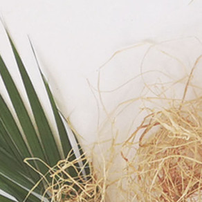 Materiality | spotlight on: raffia