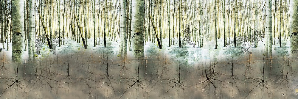 Animals run free through woods rooted by neurons