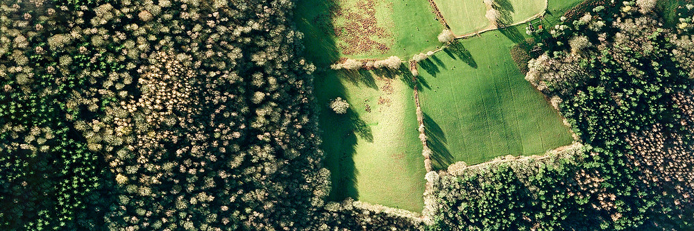 encroachment of human induced agricultural destruction - fields within a natural forested landscape