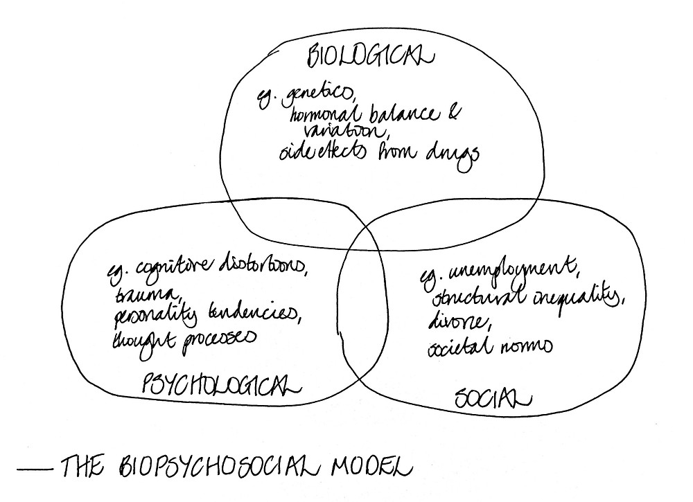 The biopsychosocial model applied to mental health