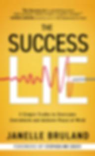 the_success_lie.png