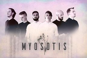 Myosotis  1.jpg