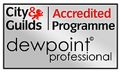 City & Guilds Accredited Programme. Pure Maintenance are Dewpoint Professionals