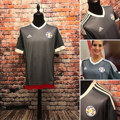 Paraguay 2015-16