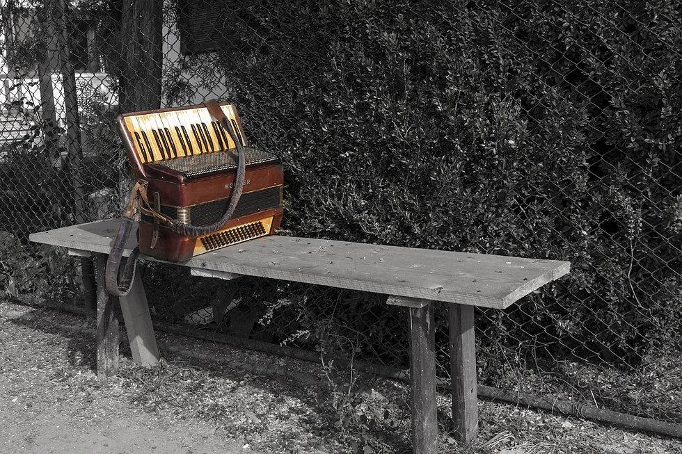accordion-831175_1920.jpg