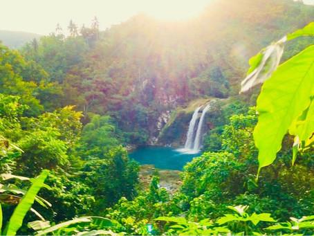 This Is Haiti HAY Online: Saut Mathurine, Sud, Haiti by Nicolas Leger