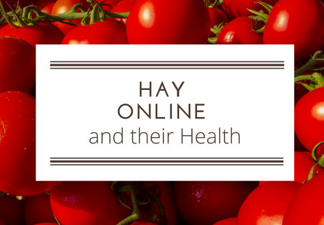HAY and their Health: Health Benefits of Tomatoes