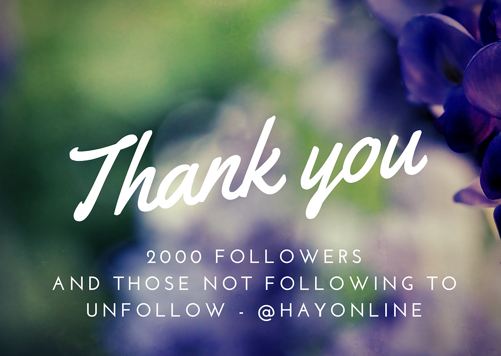HAY Online Instagram Is At 2000 Followers