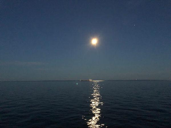 Moonlight Serenade.jpg