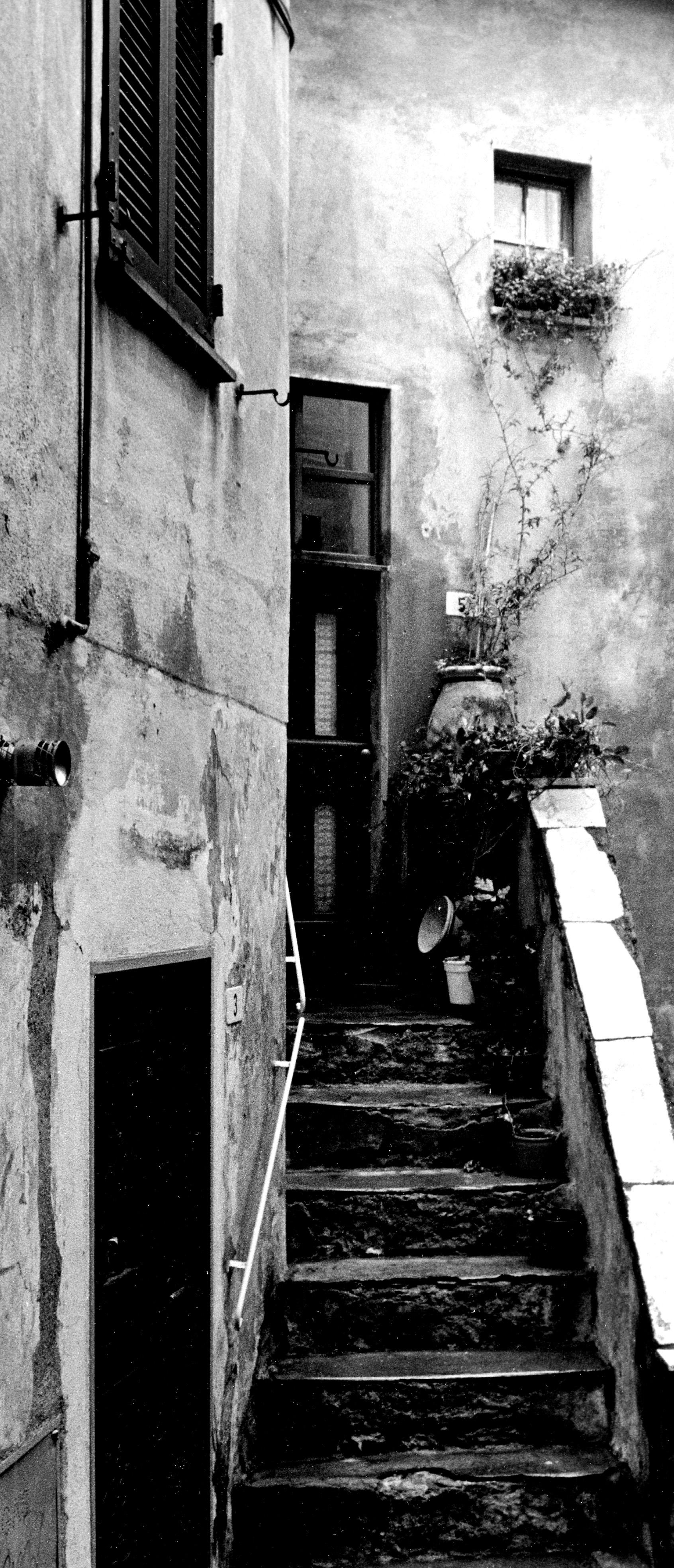 Steps Tellaro