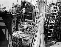 Ladder Shop