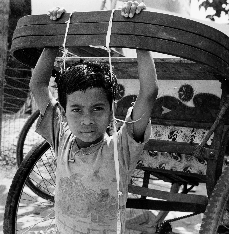 Hanging From Cart Noida