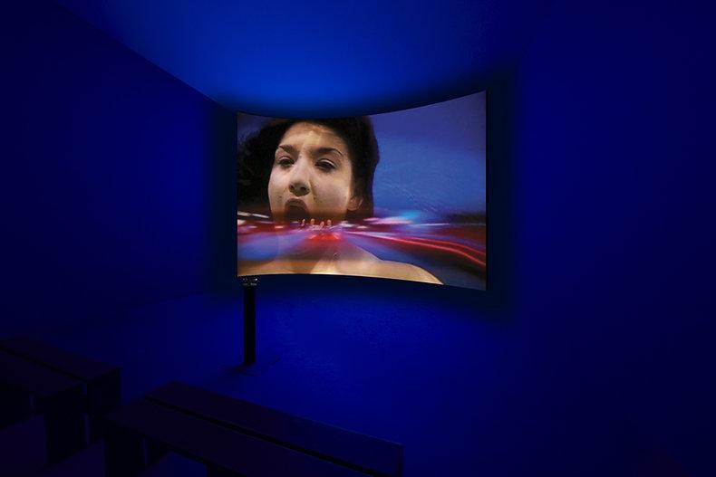 Judith Barry_Artist_Speedflesh_Installation.jpg