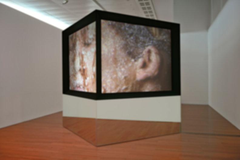 Judith Barry_Artist_Imagination-dead-ima