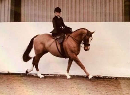 Ellie Jones- Sponsored Rider Blog