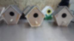 Bird Boxes 1.jpg