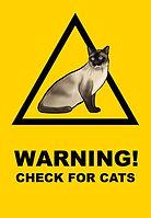 checkforcatslogo2.jpg