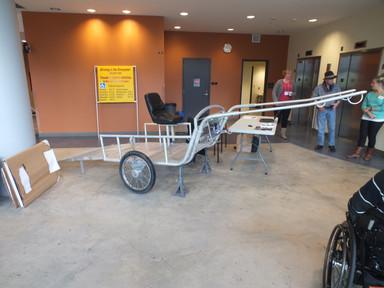 handicap horse cart trailer 3