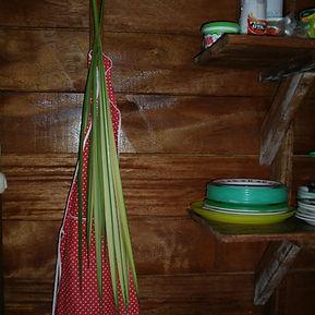 850_Cyclanthaceae_Palmata_Lisan_ties_Pho