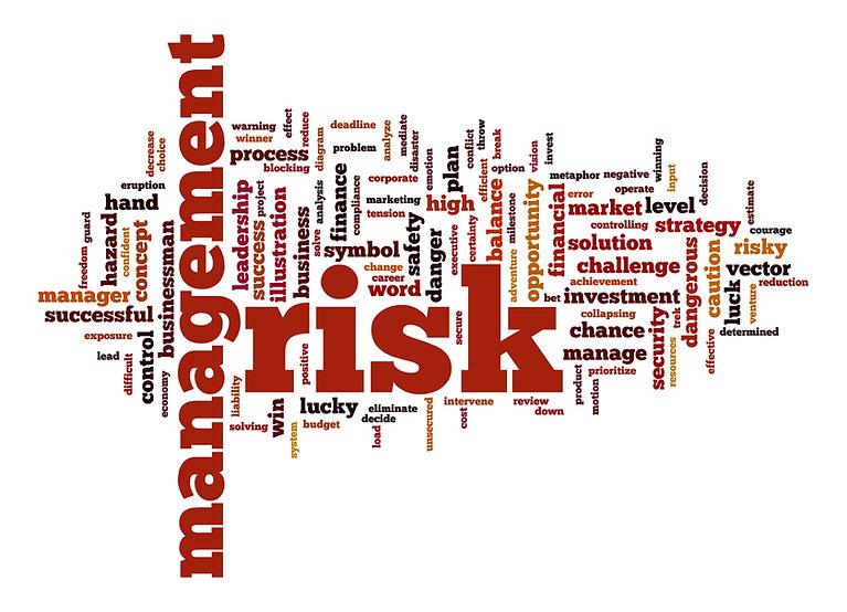 bigstock-Management-Risk-Word-Cloud-Wit-