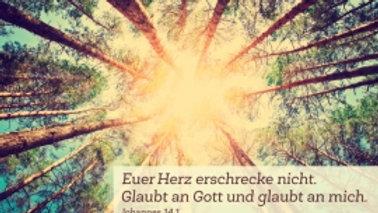 """CD Karte """"Euer Herz erschrecke nicht"""" (Motiv Baumwipfel)"""