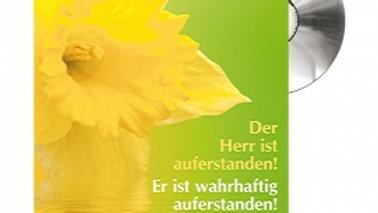 """CD Karte """"Der Herr ist auferstanden"""" Motiv Narzisse"""