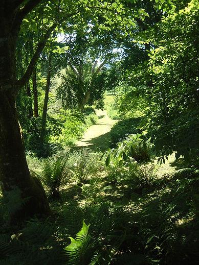 Dartingon Catch - Green Garden photo.jpg