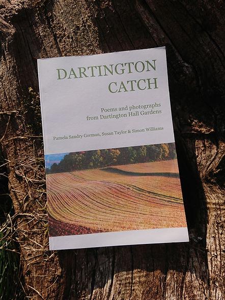 Dartnigton Catch whole.JPG