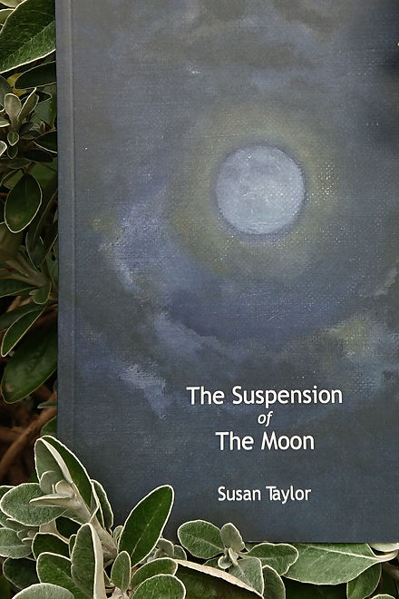 The Suspension of the Moon title roll ov