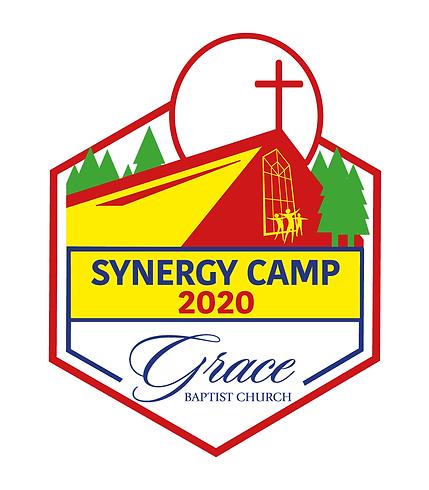 2020 Synergy LOGO FINAL v2.png