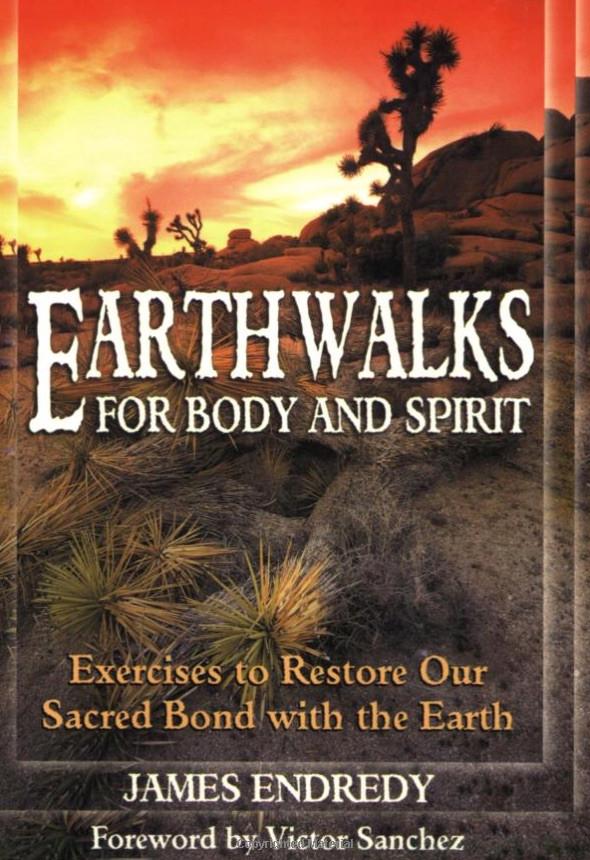 Earthwalk
