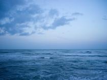 枝幸漁協 ウェブサイト