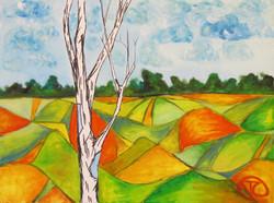 Lone Meadow  $288