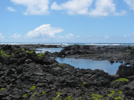 Big Island Snorkeling   The Kapoho Tide Pools