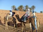 Camel Caravan Morocco travel and travails.JPG