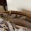 Thumbnail: Borsecchiello fantasia in velluto tortora
