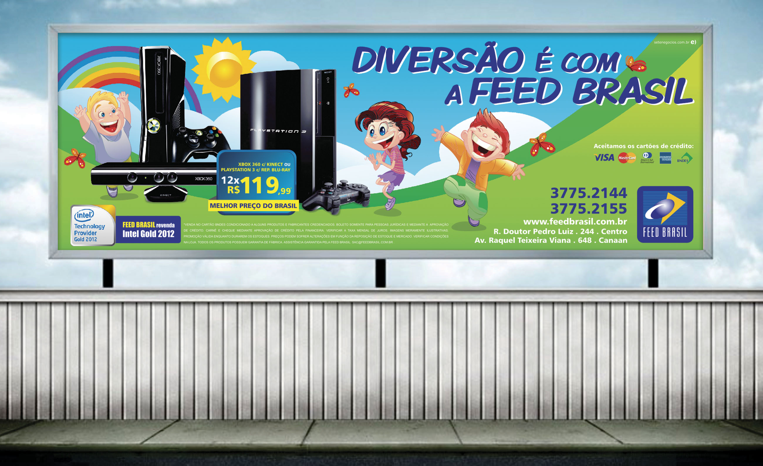 Feed Brasil