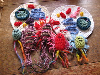 Science + Art = Crocheted cells!