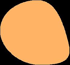 naranja ok.png
