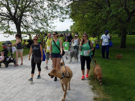 Team S'wooft Gears Up for the PAWS 5K