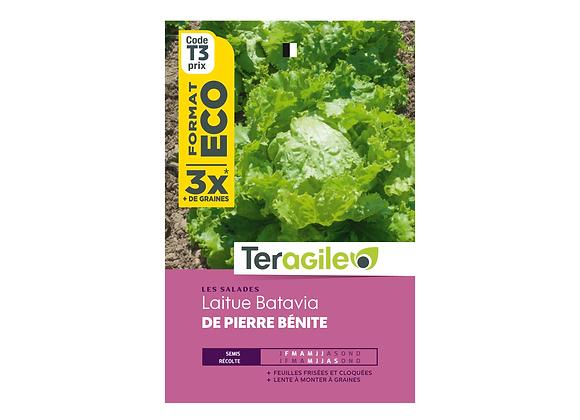 GRAINES LAITUE BATAVIA DE PIERRE BÉNITE ECO 12G TERAGILE®