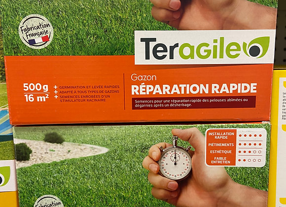 GAZON REPARATION RAPIDE 500GR