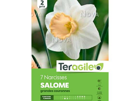 BULBES DE NARCISSES 'SALOME' GRANDES COURONNES - TERAGILE® - X7