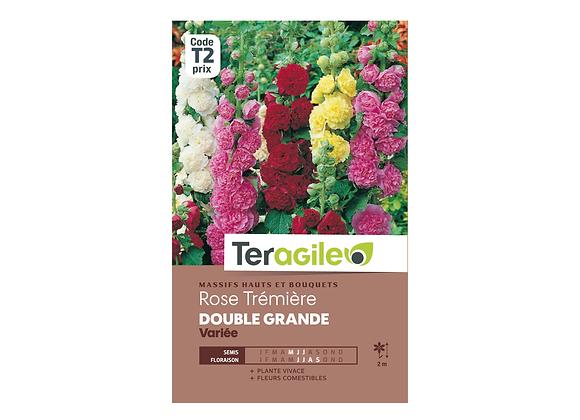 GRAINES ROSE TRÉMIÈRE DOUBLE GRANDE VARIÉE 2G TERAGILE®