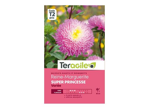 GRAINES REINE-MARGUERITE SUPER PRINCESSE VARIÉE 0.5G TERAGILE®