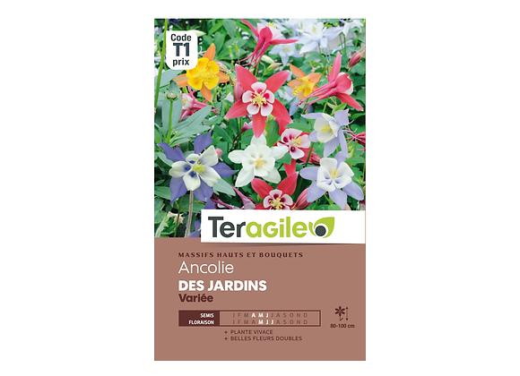 GRAINES ANCOLIE DES JARDINS VARIÉE  0.5G TERAGILE®