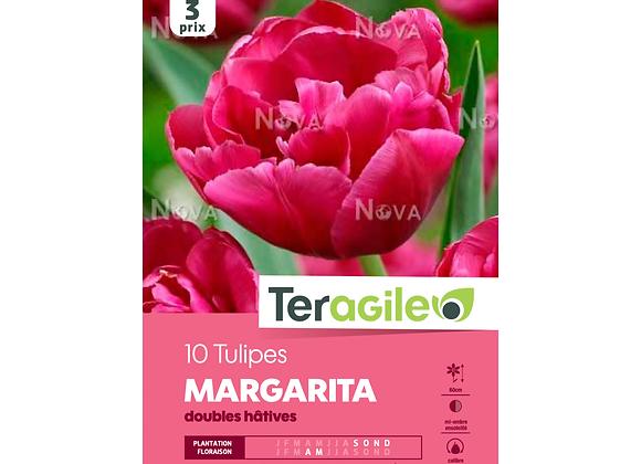BULBES DE TULIPES 'MARGARITA' DOUBLES HÂTIVES - TERAGILE® - X10