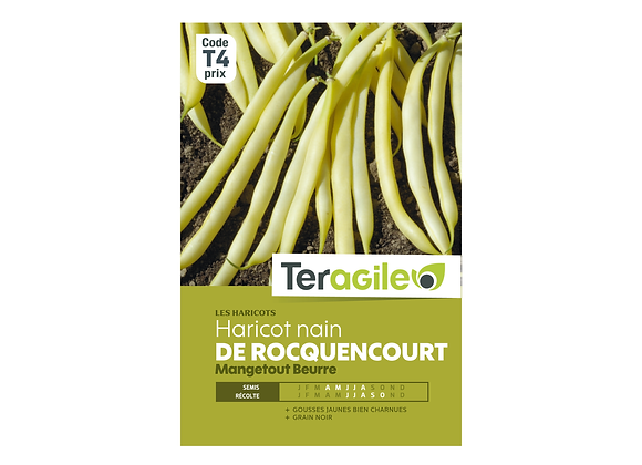 GRAINES HARICOT BEURRE ROCQUENCOURT NAIN 220G TERAGILE®
