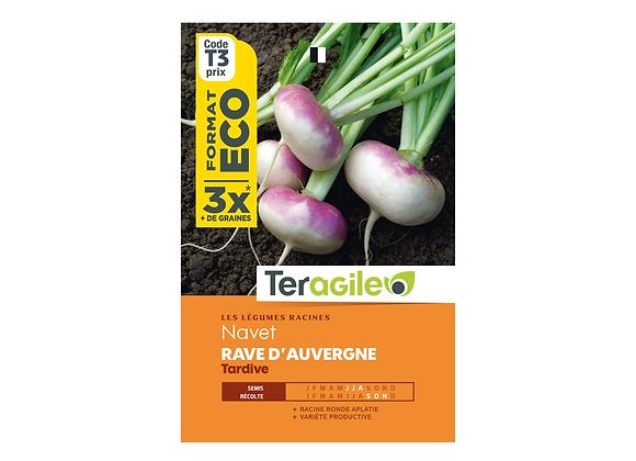 GRAINES NAVET RAVE D'AUVERGNE TARDIVE ECO 30G TERAGILE®