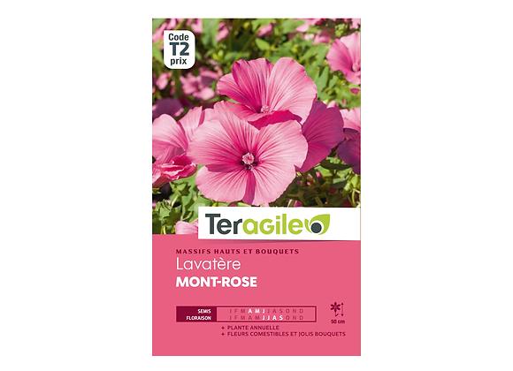 GRAINES LAVATÈRE MONT-ROSE 1.5G TERAGILE®